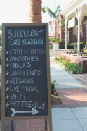 succulent-cafe-and-garden-enterance-sign-coffee-art-show.jpg