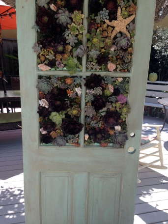 Finished Succulent Door