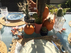 Thanksgiving outside - well it is California